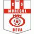 CS MUREŞUL Deva (HD)